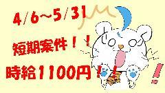 軽作業(植物、園芸売場業務 日払いOK 短期 時給1000円 )