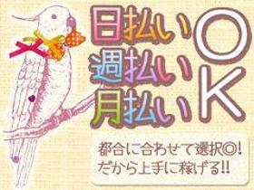 コールセンター・テレオペ(カードキャンペーン案内/長期/土日含む週5日/12~19時)