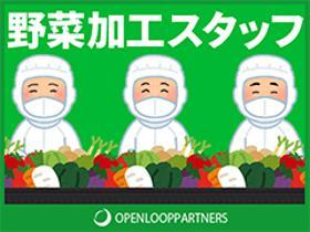 製造業(野菜のトリミング、加工、梱包、選別、長期)